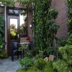 The garden at the PPR room at B&B Langeslag Hook of Holland.